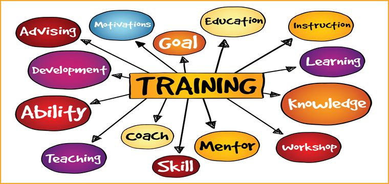 Research paper on training and development of employees